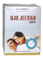 BV Pandit Ojojeevan Lehya